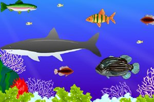 双人版大鱼吃小鱼的截图1